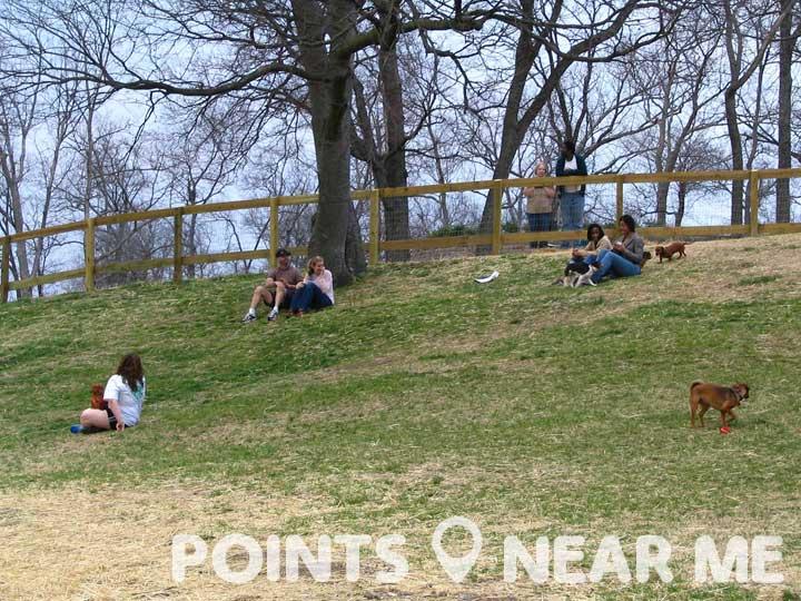 dog park near me