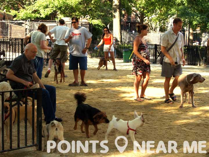 dog parks near me