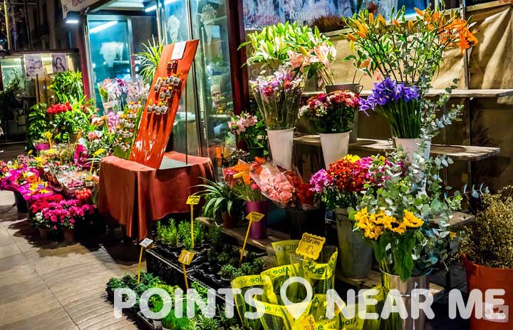 Flower shop near me points