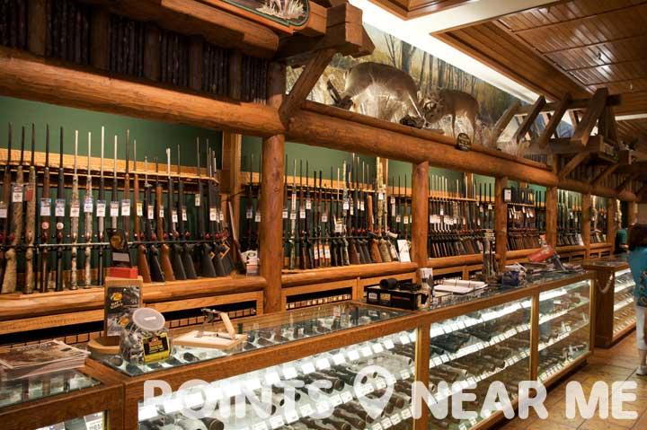 gun stores near me