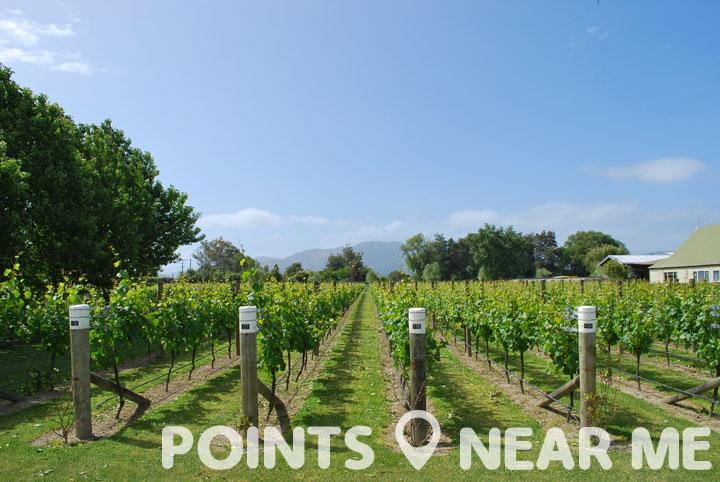winery near me