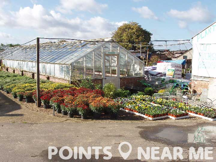 Plant Nursery Near Me Points Near Me