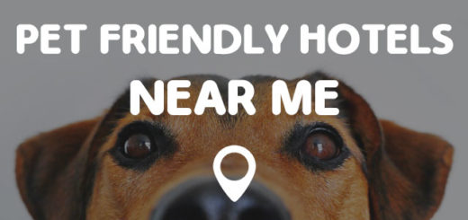 ACCOMMODATION NEAR ME - Find Accommodation Near Me Locations Quick and Easy!