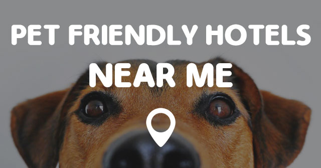 pet friendly hotels near me points near me
