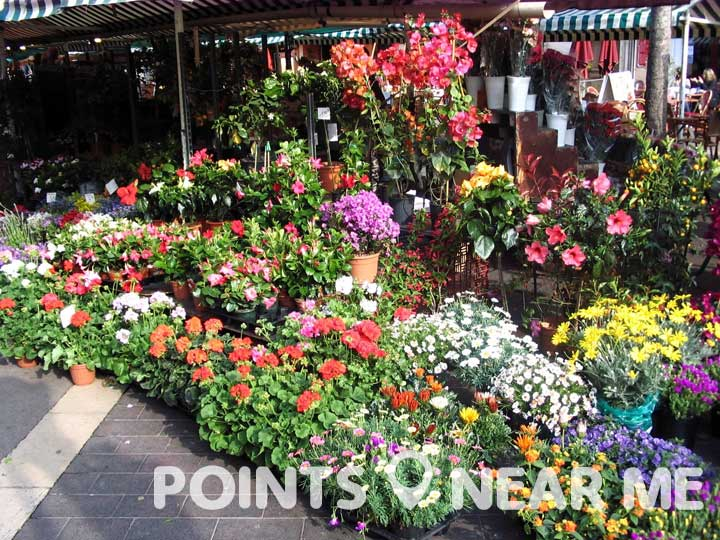 Flower markets allow you to do the arranging!